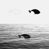 Square Whale